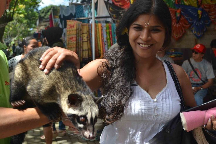 Luwak - One of world's costliest coffees is made from the poop of this animal!